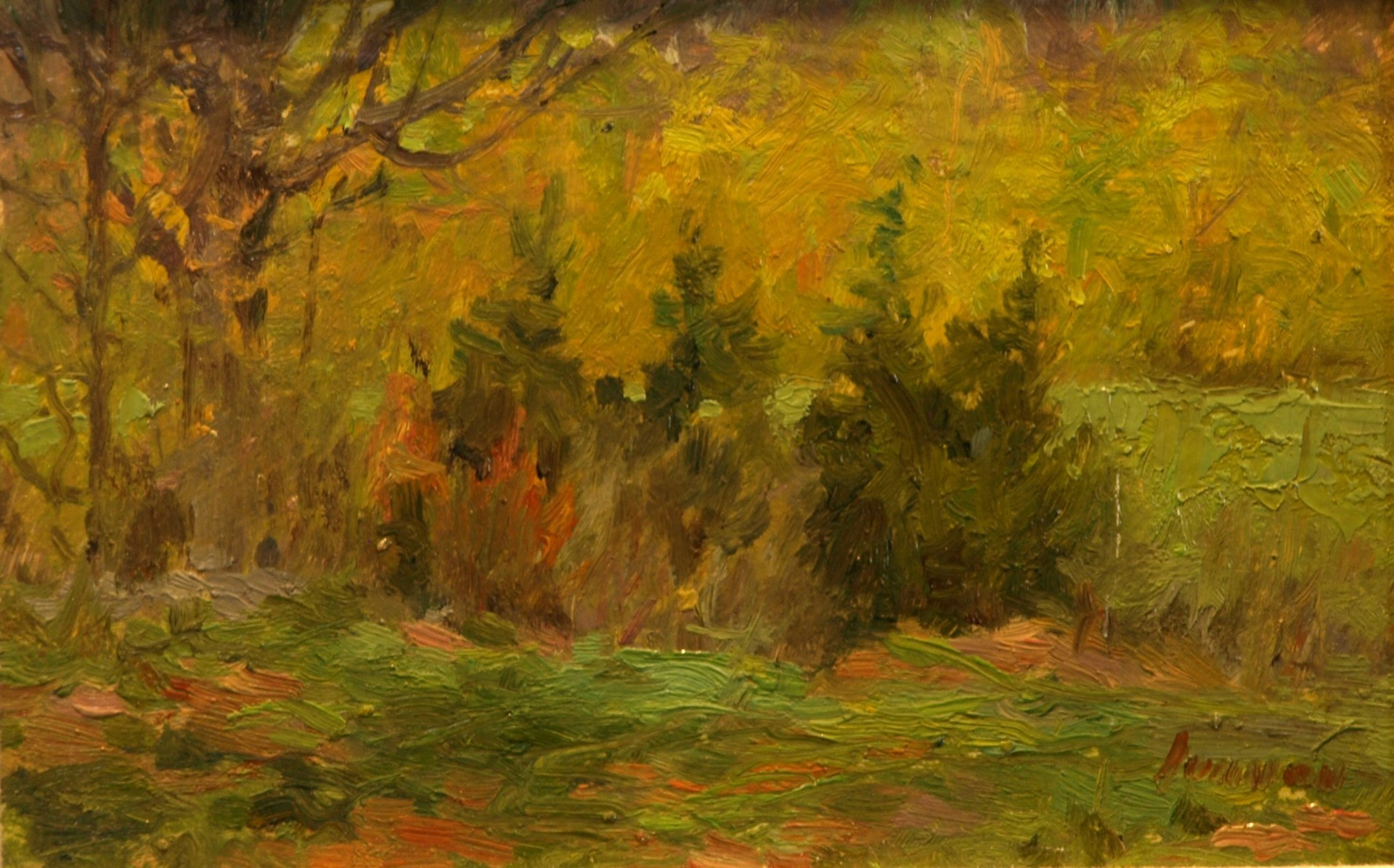 Four Cedars - Springtime, Oil on Panel, 6 x 10 Inches, by Bernard Lennon, $225